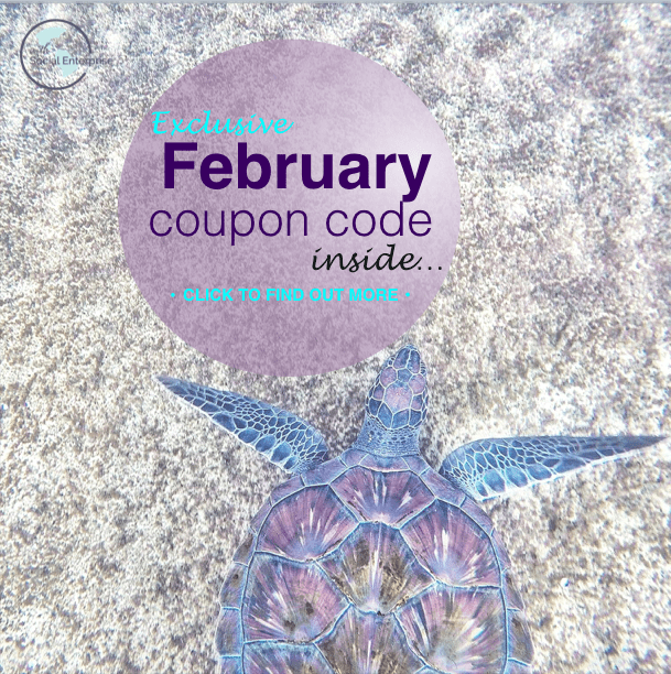 February-Coupon-Code-Online